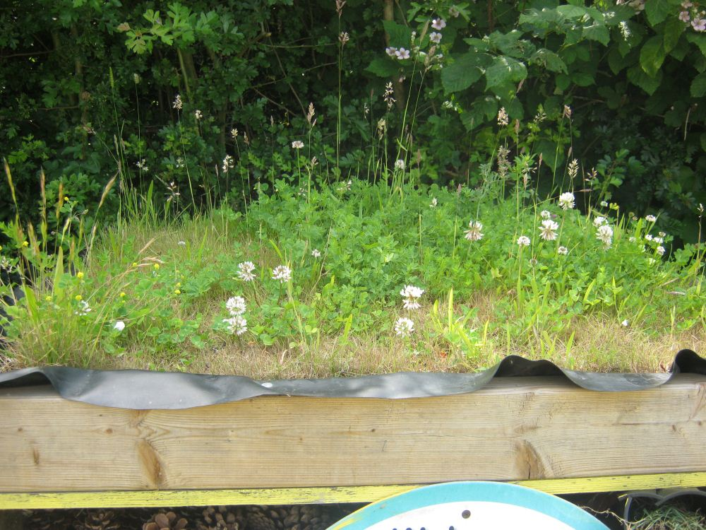 Meadow roof for Bug Hotel